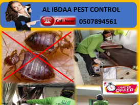 Weekend Best Offer for all types of Pest Control Services 14