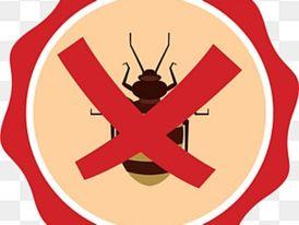 شركه مكافحة حشرات 5