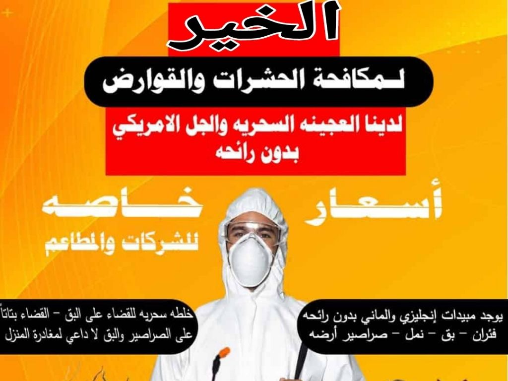 Pest Control and Rodents in Kuwait 1