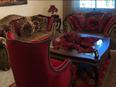 SUPER DELUXE apartment in Khalda for sale 230m 1
