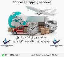 Princess Shipping Services0
