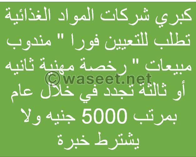 مندوبين مبيعات برخصة مهنية ثانية أو ثالثة في القاهرة الكبرى
