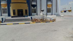 School at AlMamoura For Rent 5912 sqm