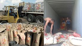 Charcoal For Export Elawsat Company Charcoal Production0