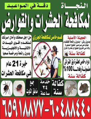 النجاة لمكافحة الحشرات