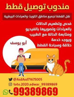 مندوب توصيل قطط للعيادات البيطريه