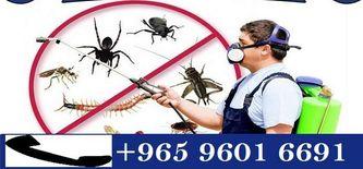شركة عمار الكويت لمكافحة الحشرات0