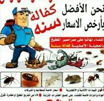 شركة مكافحة حشرات الكويت0