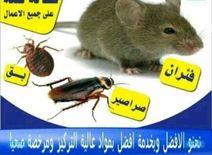 شركة الثقة لمكافحة الحشرات0