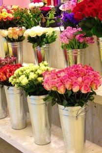 Tahani Flowers0