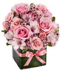 Tahani Flowers1