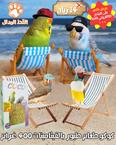 كوكو طعام طيور مشكلة بالفيتامينات 400 غرام 1