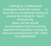 Looking for 2 professional employees